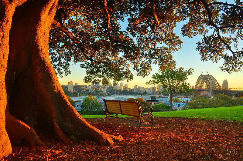 Sunrise From Observatory Hill Sydney St Photographics