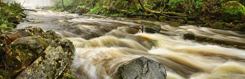 Trentham Falls Vista